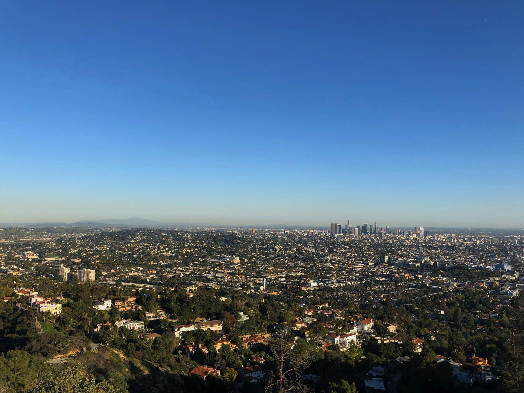 An image of the Los Angeles skyline taken from the Griffith Observatory.